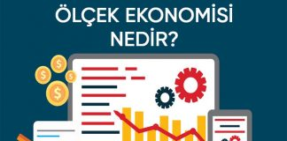 ölçek ekonomisi nedir
