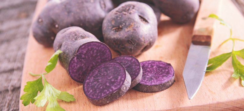 mor patates nedir, mor patates yetiştiriciliği nasıl yapılır