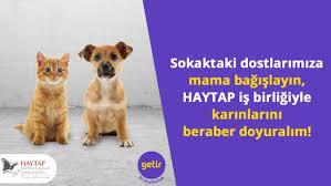 türkiye deki sosyal sorumluluk projeleri